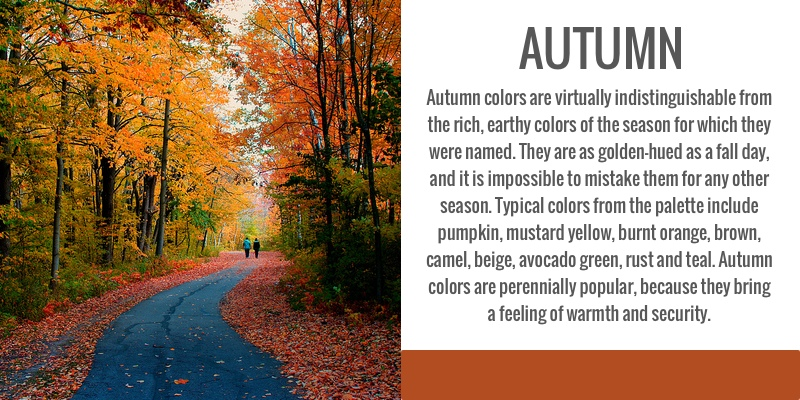 color analysis, seasonal, autumn
