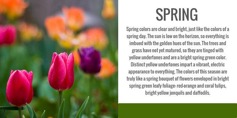 color analysis, spring, seasonal