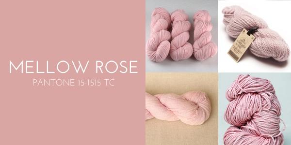 mellow rose